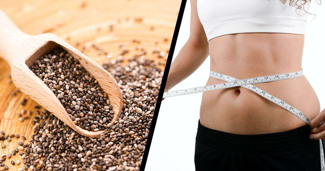 Chia Seeds The Health & Weight Loss